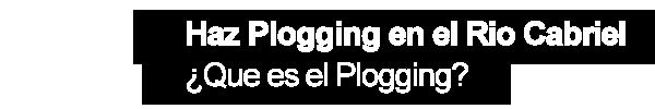 ¿Que es el ploogging?